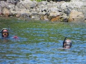 Diving in Thorne Bay Alaska for Fresh Uni, Sea Cucumber & Scallops